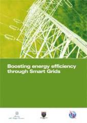 Boosting Energy Efficiency Through Smart Grids
