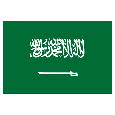 Kingdom of Saudi Arabia logo