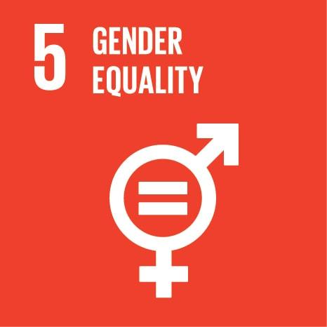 Wsis prizes 2017 goal 5 gender equality stopboris Images